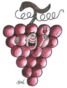 vin-4-230x300